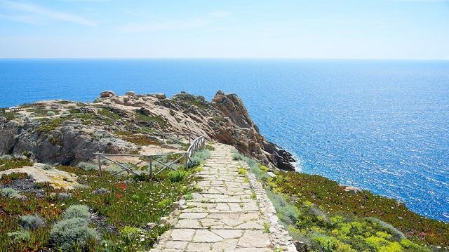 Isola-Del-Giglio-114597