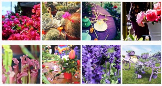 Flower Show 2018