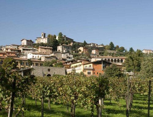 Enoturismo, che passione: una pausa di relax tra le vigne in Franciacorta