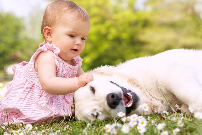 cani e bambini pet therapy