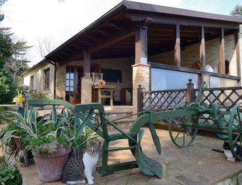 Agriturismi Marche: una vacanza tra ospitalità, natura e ottimo cibo