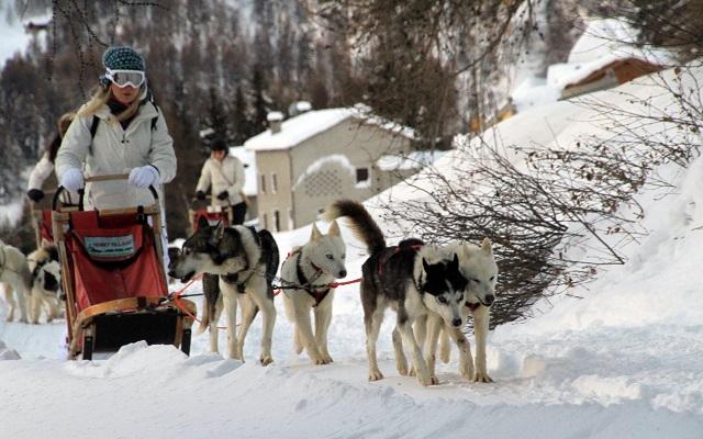 Festa della Donna: regala esperienze in Valtellina alle tue donne del cuore