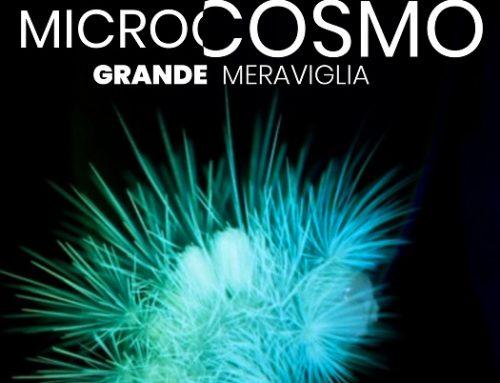 """Giornata Mondiale della Terra: in prima visione su Nexo+ """"Microcosmo"""""""