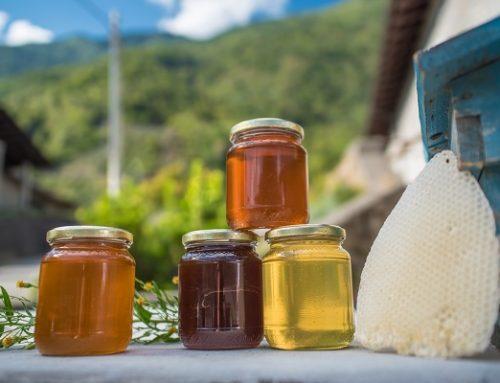 Sapori della Valtellina: non solo pizzoccheri e vini ma tanto altro ancora