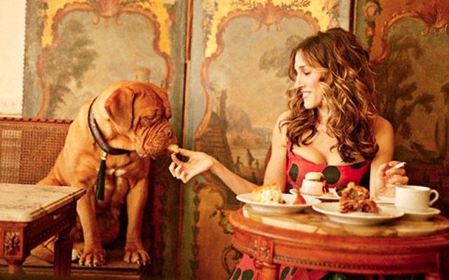 Giornata Mondiale del Cane: al ristorante col nostro migliore amico