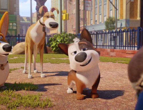 Tappo – cucciolo in un mare di guai: trama, trailer e recensione
