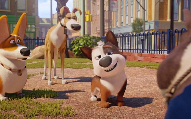 Tappo - cucciolo in un mare di guai: trama, trailer e recensione