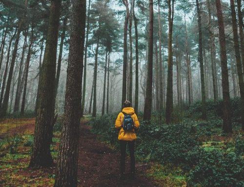 Viaggio in solitaria: arriva il corso online che ti prepara dalla A alla Z