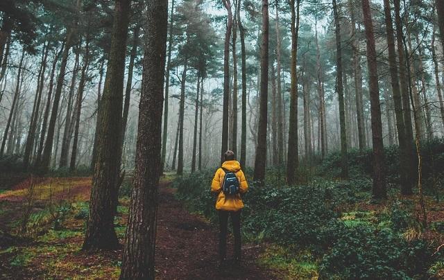 Viaggiare in solitaria: arriva il corso online che ti prepara dalla A alla Z