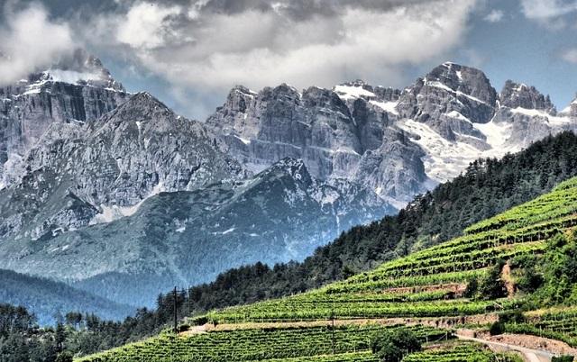 Villa Corniole: l'eleganza dei vini di montagna